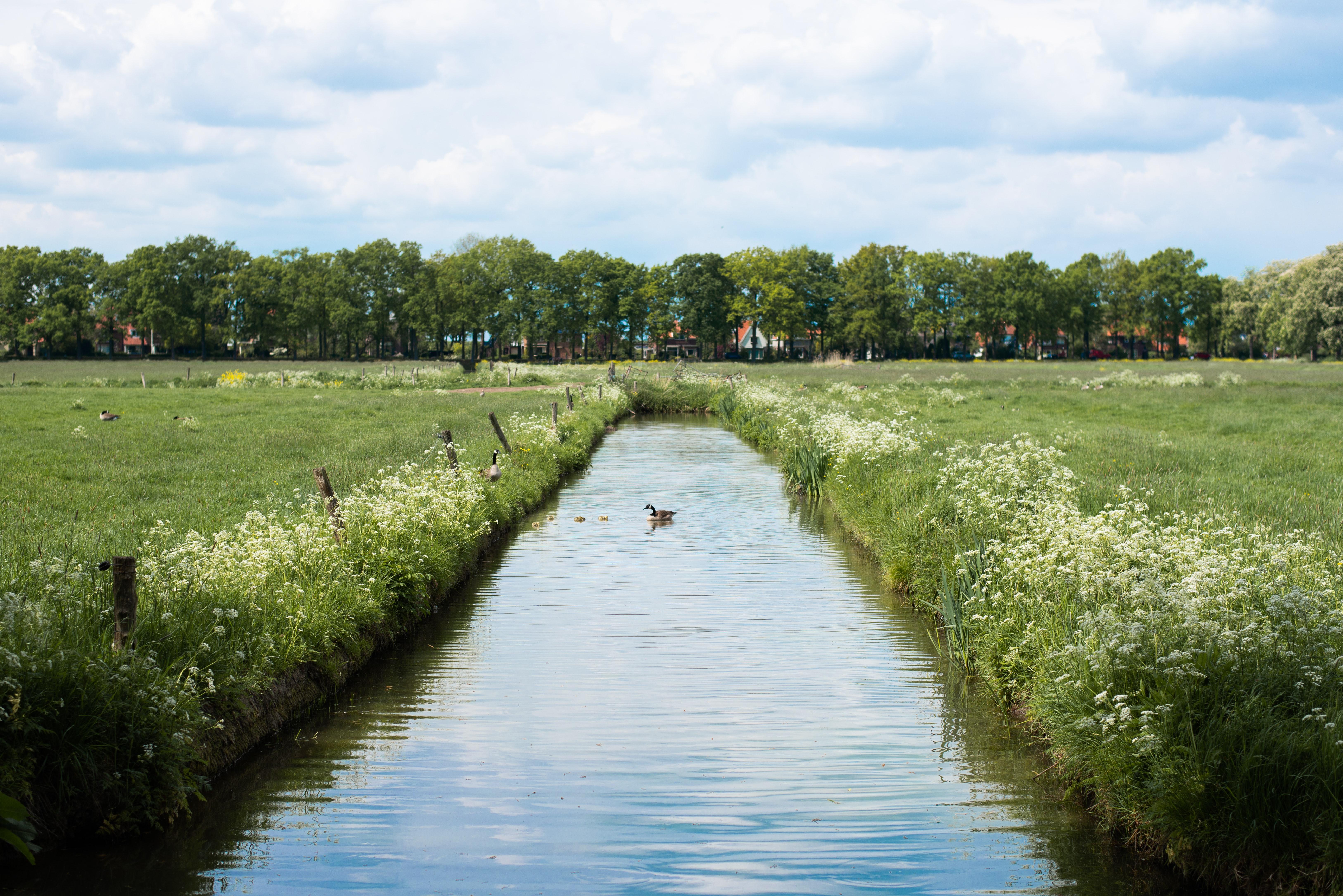 Beleidsanalyse klimaatadaptatie en gebouwde omgeving (Land van Cuijk)